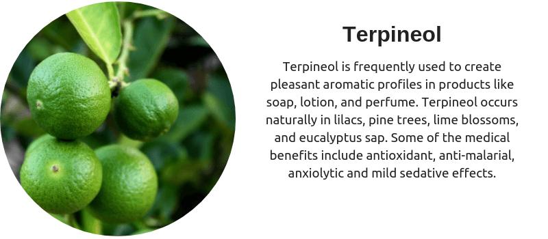 Cannabis Terpenes - Terpineol