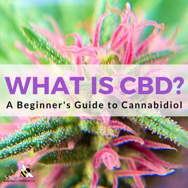 What is CBD? A Beginner's Guide to Cannabidiol