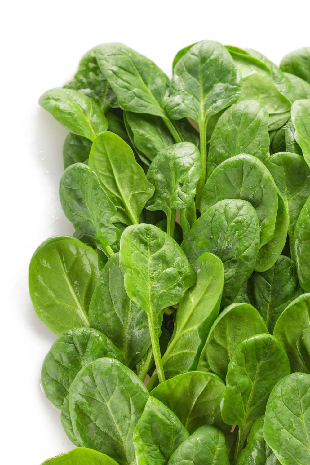 Adding fresh greens, such as spinach, to your Superfood Smoothie Recipe adds a ton of fiber and other nutrients to make a complete meal